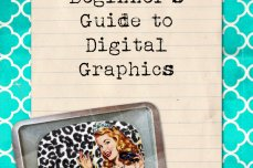 Beginners Guide to Digital Graphics